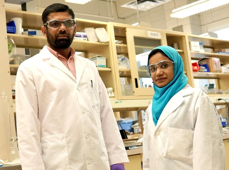 Future Energy Systems Post-Doctoral Fellow Muhammad Arshad and PhD student Irum Zahara