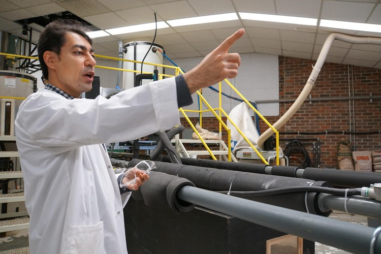 Future Energy Systems HQP Mahdi Vaezi is working on a way to transport biomass through pipelines in a way that is economically and environmentally sound. In his one-of-a-kind lab, he has designed and built a pipeline and determined mixtures to ship plant