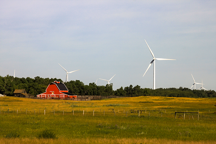 Ensuring smooth sailing for wind power in rural Alberta will take cooperation and communication with landowners, not winding up for a fight. (Photo credit: Aleksandra Afanasyeva)