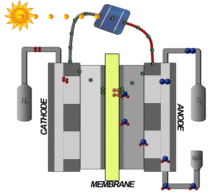 An electrolyzer cell with proton and electron flow